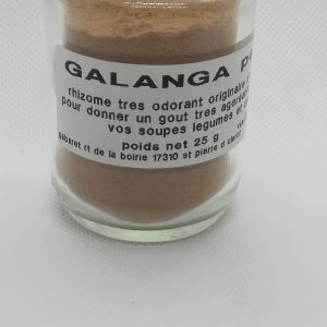 Galanga petit