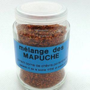 Mélange des Mapuches