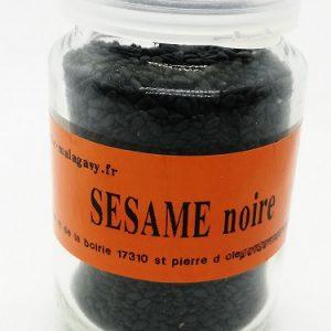 Sésame noire graine